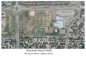 Greystone fields